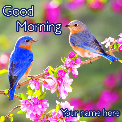 Fresh Good Morning Wishes Images With Name Edit
