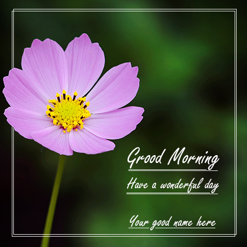 Write name on flower good morning image